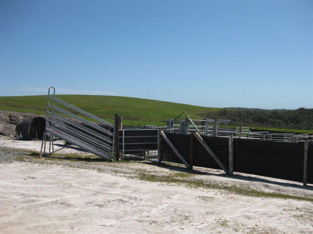 "plains""塔斯马尼亚优质天然农场"